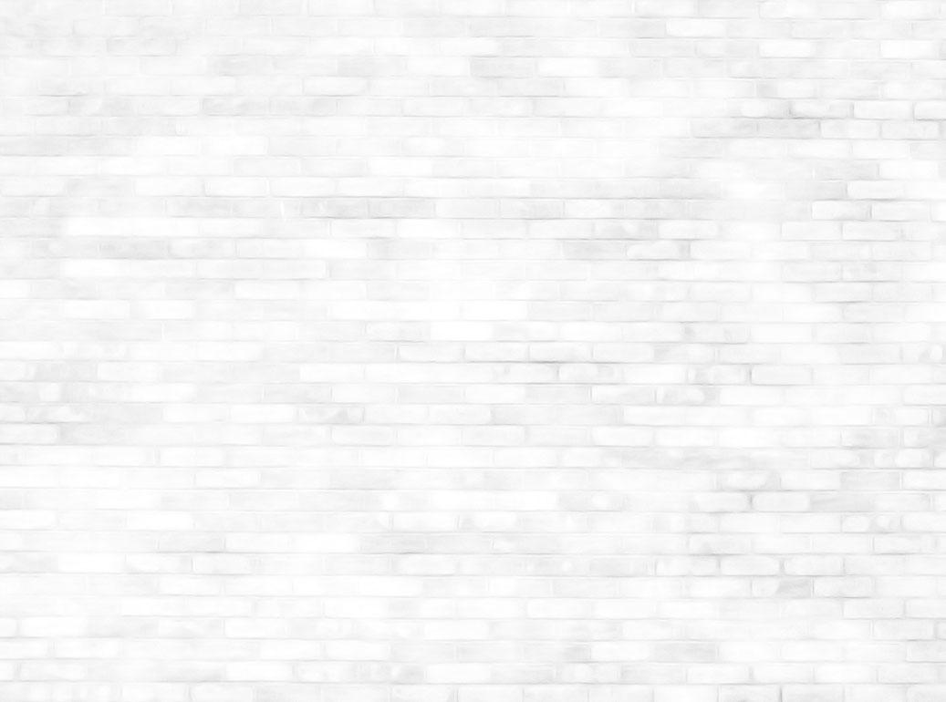 brick_wall-bcg